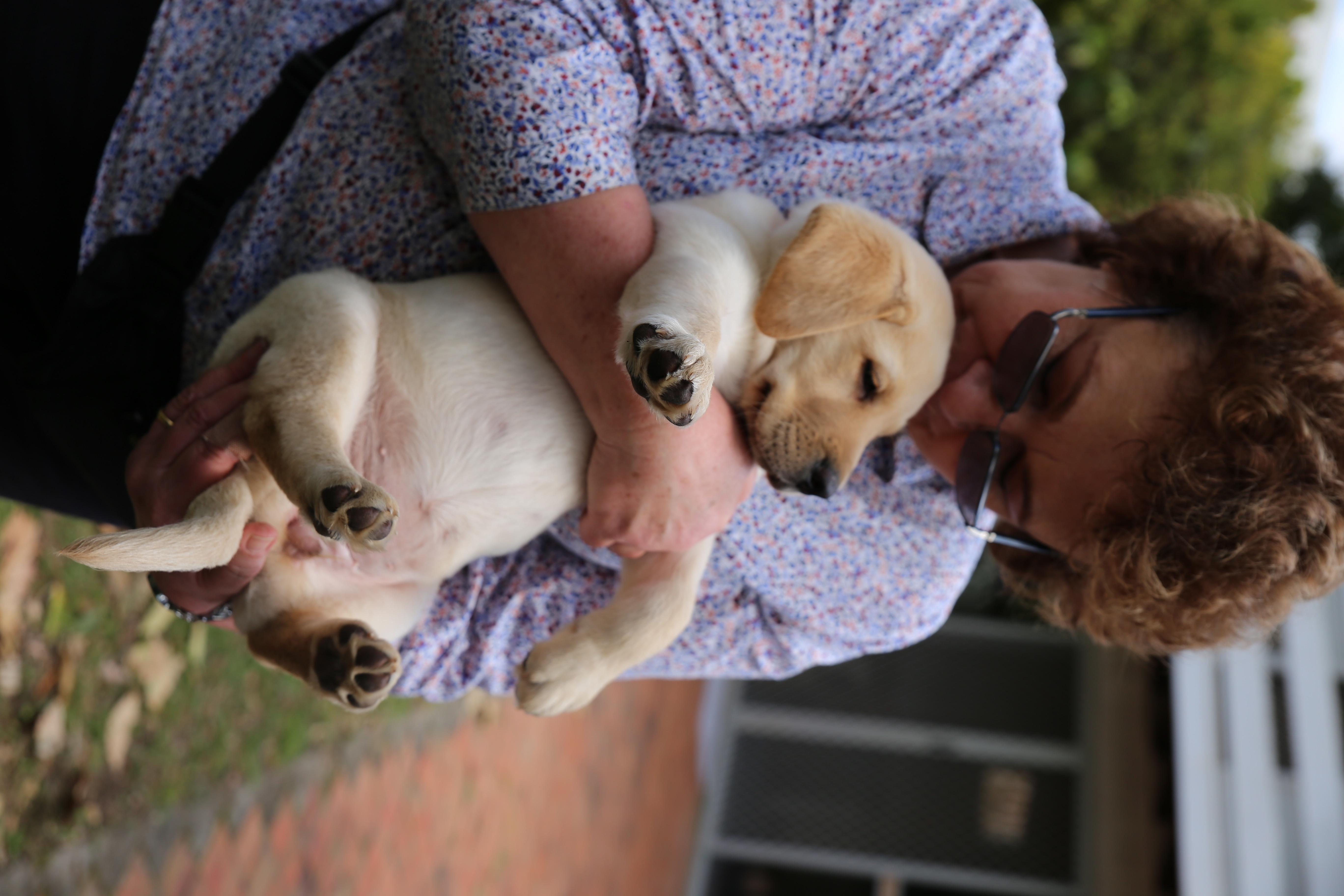 Puppy Raiser with Puppy